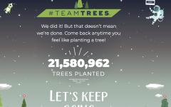 #teamtrees